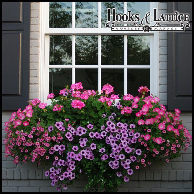 window boxes planters | Solera Self Watering Window Box Planters