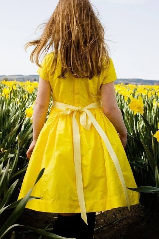 249 best daffodil cottage images on pinterest