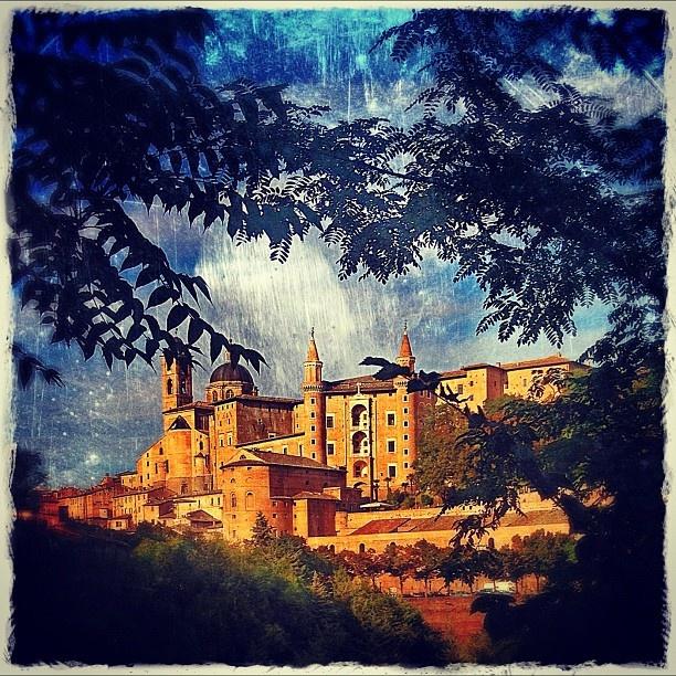 Urbino Le Marche Italy