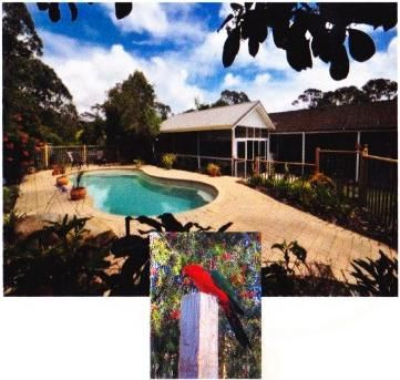 Take a dip in the secluded saltwater pool! Lounge in the screened outdoor room and  watch the birds  suckle from the bottlebrush! Relax!
