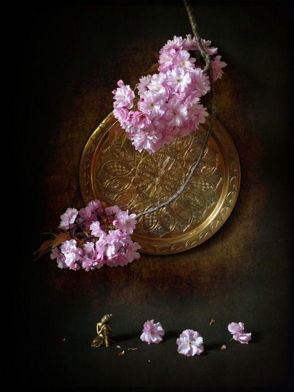 Маленький Будда и большие розовые облака © Надежда Былкова