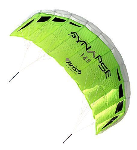 """53"""" Green Dual-line Parafoil Kite Summer Kite special easy to fly Storage Bag US #KandN"""