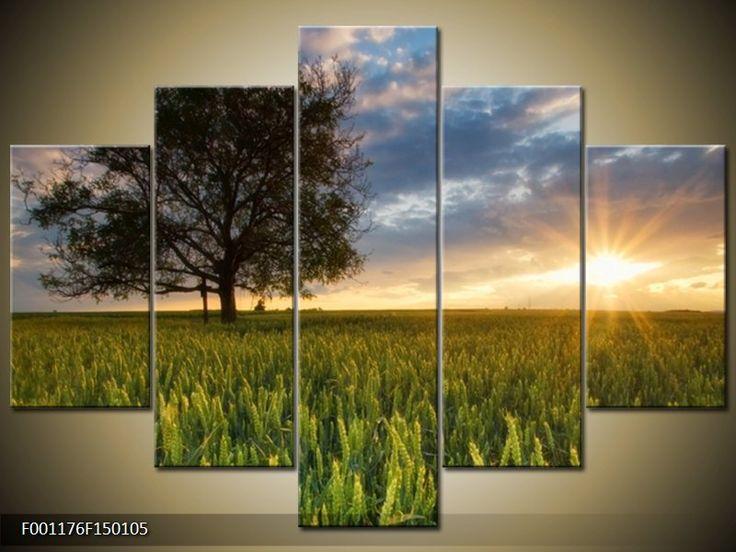 Moderní obraz F001176F150105