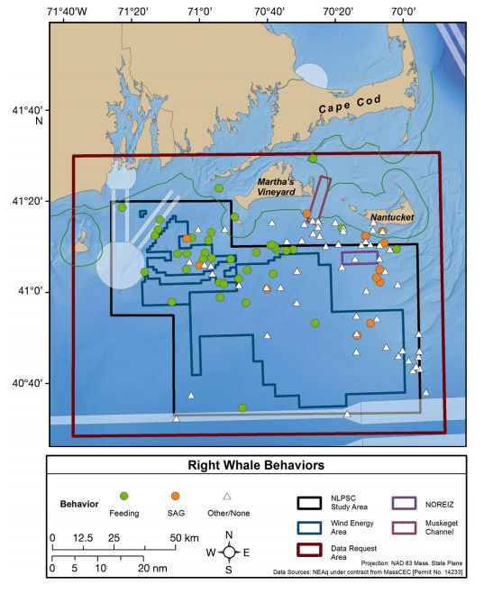 North Atlantic right whale occurrence in offshore wind energy areas near MA and RI, USA