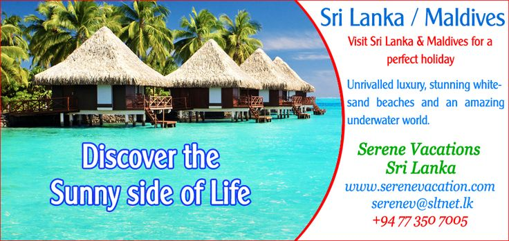 Sri Lanka & Maldives tour packages, Great deal and special offers.   Hotline : +9477 3507005 (With - Whatsapp & Viber call/ Message) Email : serenev@sltnet.lk Website : www.tripsrilanka.net