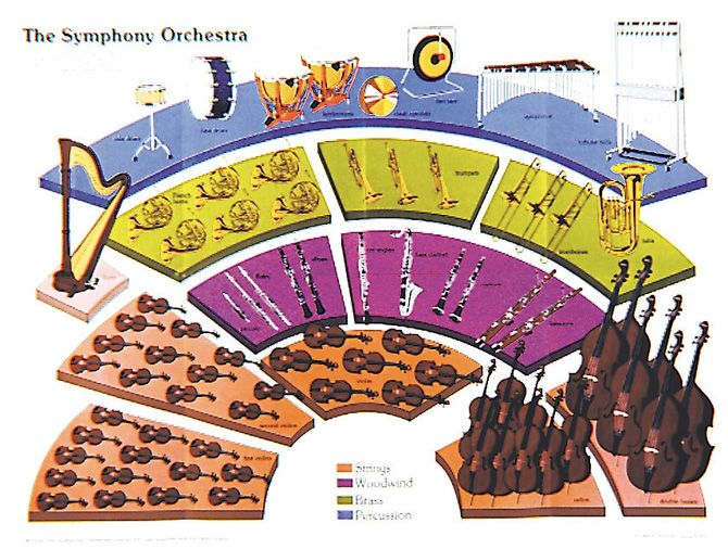 symphony orchestra poster instruments of the orchestra are clearly drawn to show their. Black Bedroom Furniture Sets. Home Design Ideas