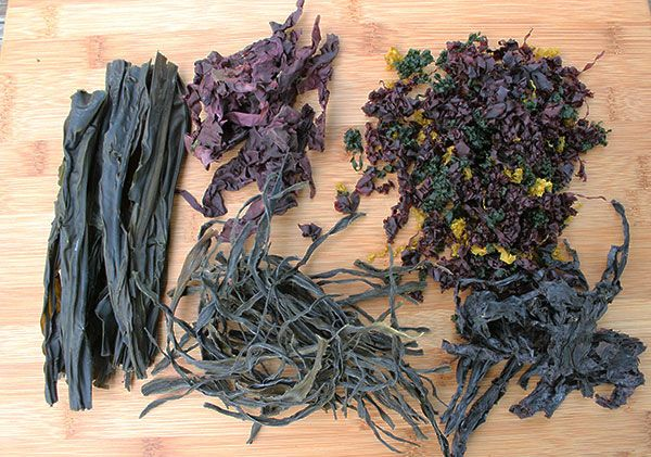 Making a Homemade Seaweed Salad  There are several packaged mixes on the market today, but nothing comes quite as close to making your own homemade seaweed salad from seaweeds you can select yourself, using the best quality available for highest nutritive value and health enhancing benefits.