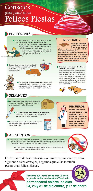 Consejos para cuidar a nuestras mascotas en Navidad y Año Nuevo