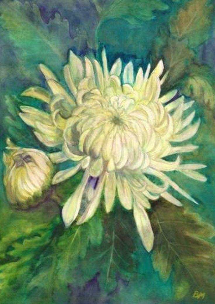 Chrysanthemum - Krizantém - aquarelle -  21 x 30 cm -  By Márta  Bolla - Hungary