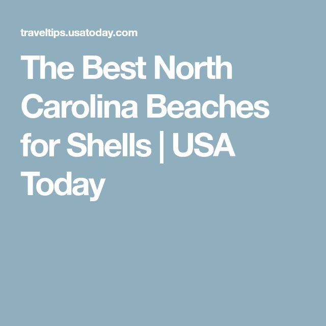 The Best North Carolina Beaches for Shells | USA Today