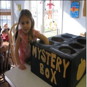 Mystery Box - Guess what's in each hole (for a baby shower: diaper, bottle, teething toys, etc.