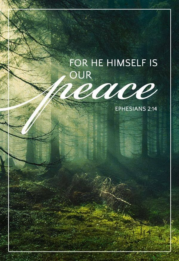 bibledevotionals:  Philippians 4:7 And the peace of God, which passeth all understanding, shall keep your hearts and minds through Christ Jesus