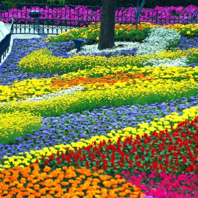 17 Best Images About Beautiful Gardens On Pinterest Canada To Heaven And Los Angeles