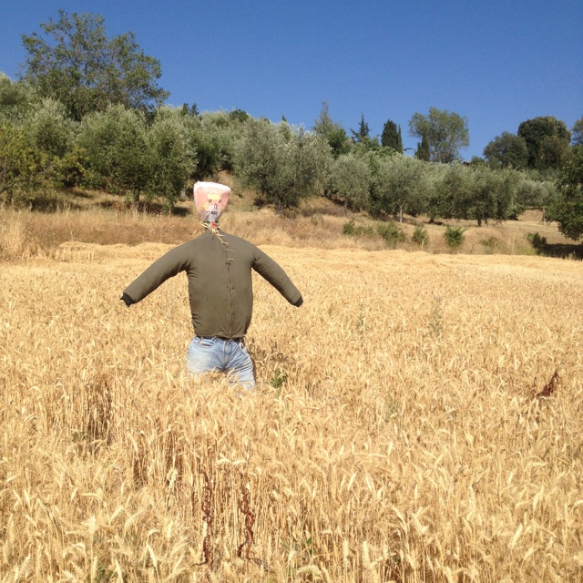 Scarecrow in Paciano, Italy