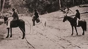 A postcard from the time. reportedly showing 3 of the kelly gang on their horses. Ned on Mirth the grey mare.