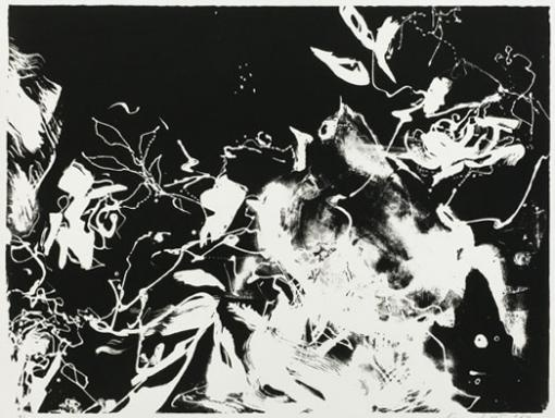 Taiteilija: Sirviö Kaisu Teosnimi: Yölaulajan ruusutarha Tekniikka: grafiikka (kehystämätön vedos) Koko: 70x100 cm Vuosi: 2010 Lainahinta: 20 €/kk Hinta: 550 €