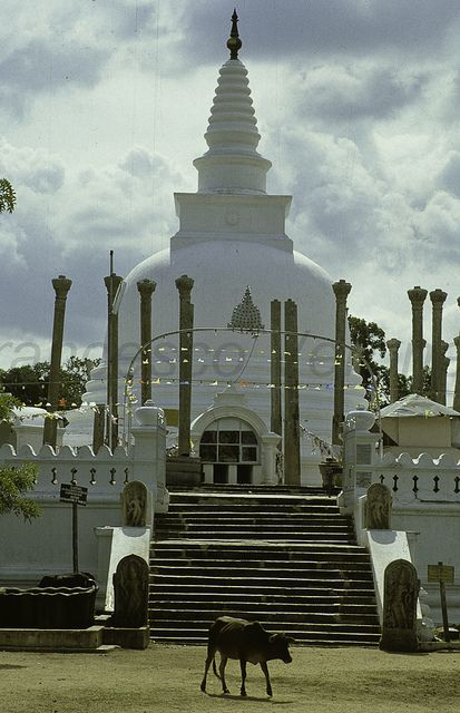 Thuparamaya is the one of the oldest temples in Sri Lanka which is in the shape of Bubble or Bubbulakara.