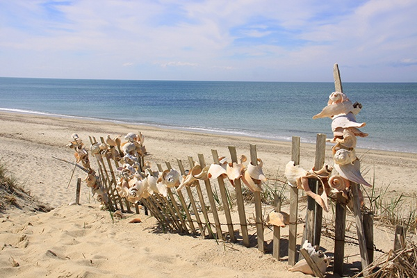17 Best Images About Nantucket Beaches On Pinterest Swim