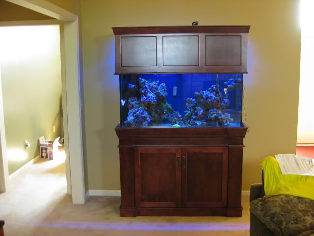 Custom Fish Tank Stand And Canopy Woodworking Projects