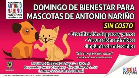 Jornada de esterilización gratuita. #Bogotá Antonio Nariño. 30 de agosto