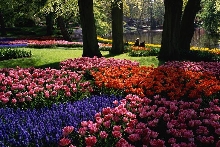 114 best images about fantastic gardens paths to beauty - Jardines de holanda ...