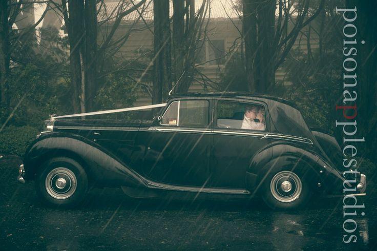 I just love shooting in the rain!! #weddingphotography #brisbane #poisonapplestudios #bride #wedding