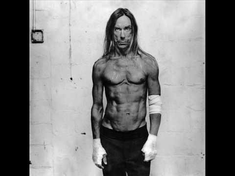 yes he fell off the stage onto me..I was 16...Iggy Pop - The Passenger