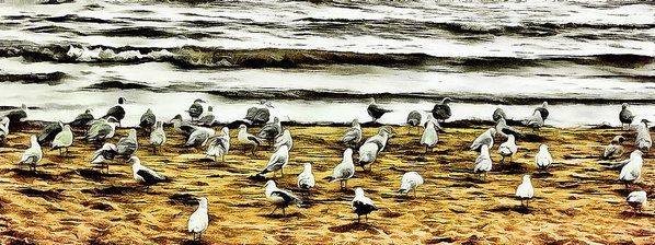 Beach Party Art Print by Leslie Montgomery.