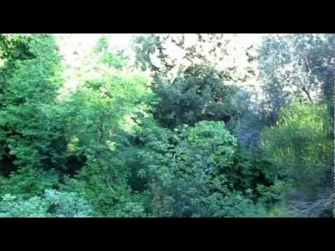 ΣΑΜΟΣ ΤΟ ΝΗΣΙ ΤΟΥ ΠΥΘΑΓΟΡΑ-Η ΚΥΡΑ ΤΩΝ ΑΜΠΕΛΙΩΝ 1: ΣΤΑΥΡΙΝΗΔΕΣ