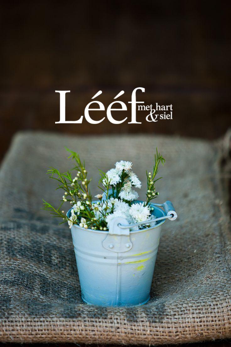 Natuur/aards, tuin/garden www.leef.co.za
