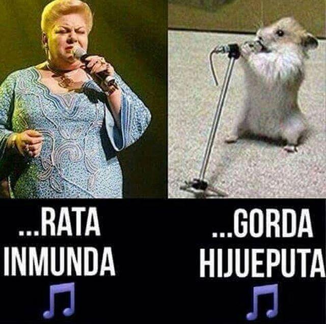 Jajajajajajajajajaja  #Paquita #Meme #Chistoso #Hijueputa