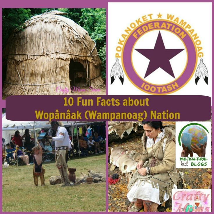 10 Fun Facts about Wampanoag Nation   Multicultural Kid Blogs