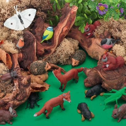 Small world play activities with the Wonderful Woodland scene kit. Inspire children to explore a rich habitat of colour and texture.