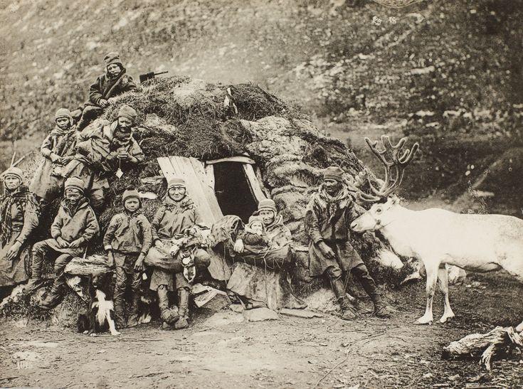 1015. Laplanders  reindeers II fra marcus.uib.no