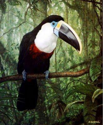 Pinturas & Cuadros: Aves exóticas pintadas en óleo sobre lienzo
