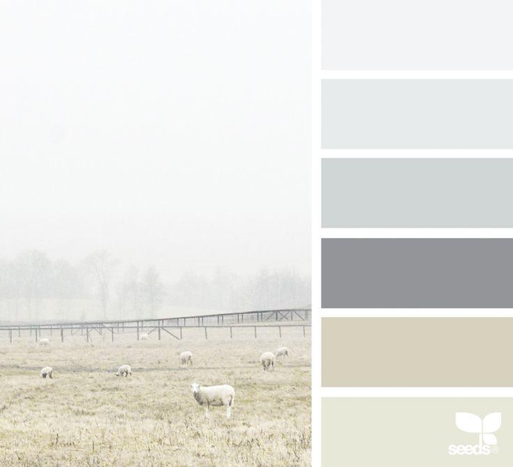 { color pasture } image via: @lisaridgelyphotography