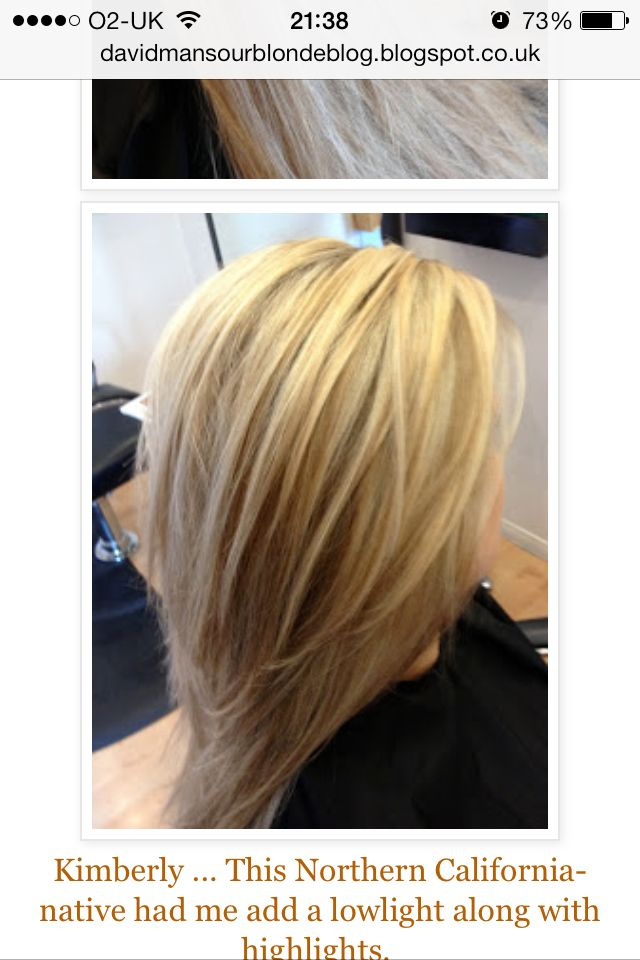 multitonal blonde highlights blonde hair with brown