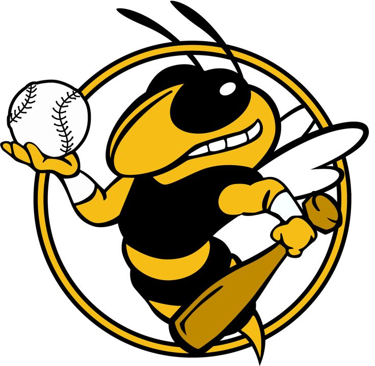 Yellow Jackets Sports 2