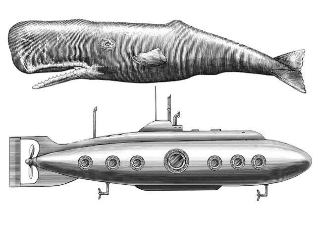 Steven Noble: Sperm Whale vs Submarine | Rustic Nautical ...