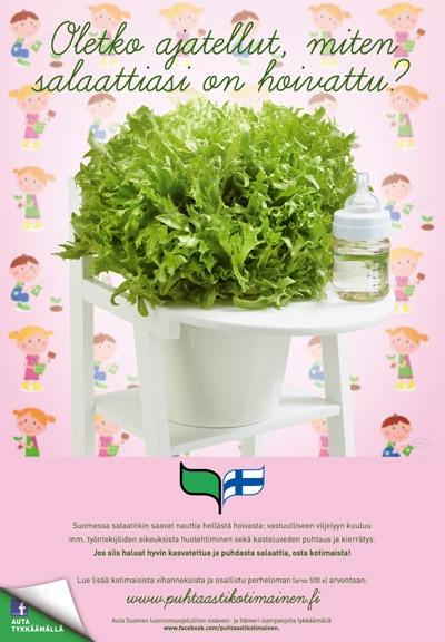 Puhtaasti kotimainen - Oletko ajatellut, miten salaattiasi on hoivattu? 2012