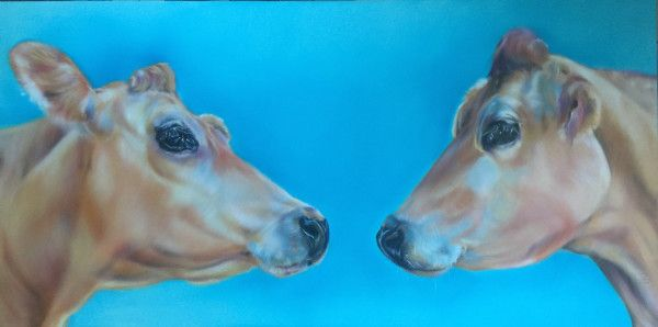 Carol Gillan Animal Artist & Pet Portraits - FOR SALE - COW PAINTINGS IN OIL
