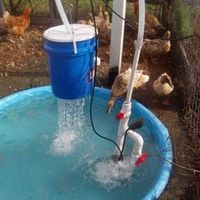 Duck Pond & Shower with how-to instructions.  There is a filter in the bucket, which reduces the frequency of clean-outs to twice a week.  The pump makes cleaning out the pool easier too because they just point the hose into the garden instead of the bucket.