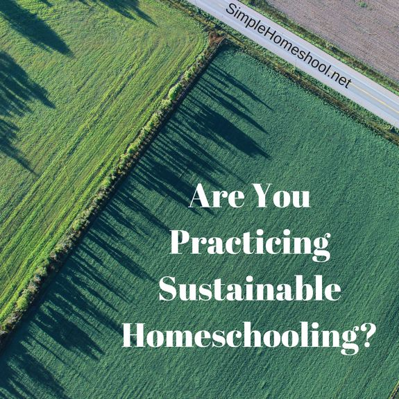 Do you want to make consistent homeschool progress without burning out? Welcome to the concept of sustainable homeschooling. Here's how it works.