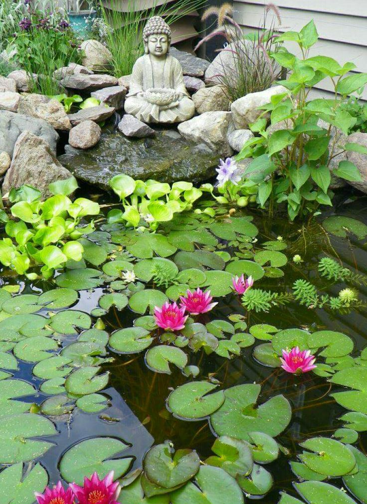 21 best water gardens images on pinterest small water for Small japanese ponds