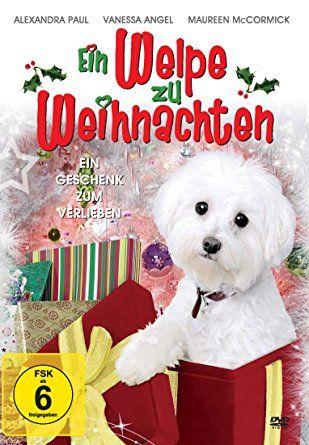 Ein Welpe zu Weihnachten: Amazon.de: Alexandra Paul, Jason Brooks, Aaron Jaeger, Mariah Buzolin, Maureen McCormick, Bryan Craig, David DeCoteau: DVD & Blu-ray
