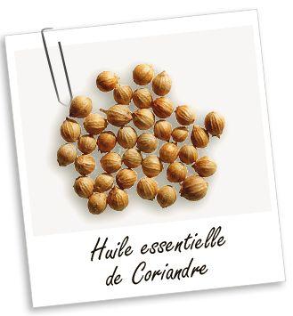 Huile essentielle Coriandre Aroma-Zone