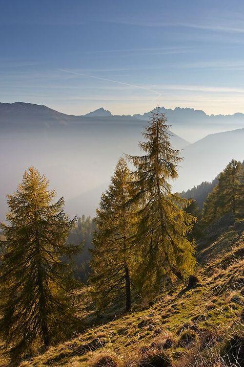 Beautiful alpine scenery by Edwin Stranner, Carinthia, Alps, Austria