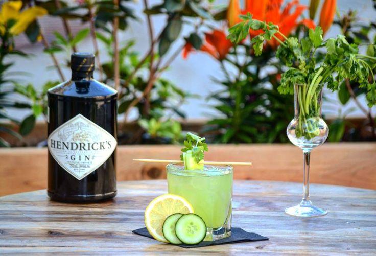 Fraicheur estivale: THE GARDEN! Gin Hendrick's, concombre frais, coriandre fraiche, jus de citron frais, sirop simple.