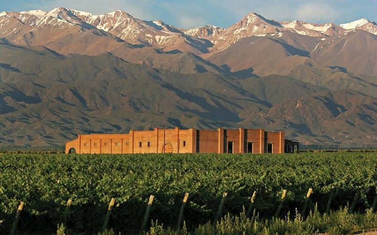 Bodega Andeluna To learn more about #Mendoza click here: http://www.greatwinecapitals.com/capitals/mendoza
