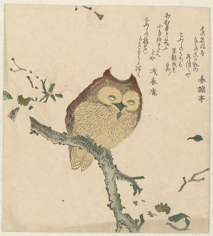 Oehoe in bloeiende magnolia, Kubota Shunman, Shunchôtei, Senshunan, ca. 1890 - ca. 1900